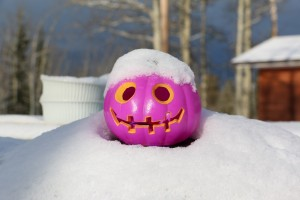 The pumpkin's got his hat on, hip hip hip hooray!