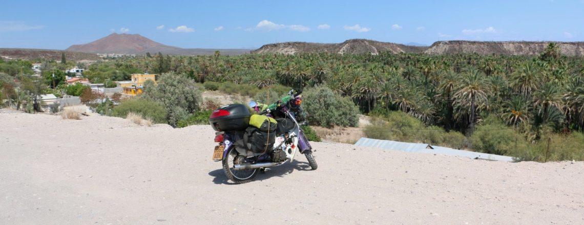 A Desert Oasis: Guerrero Negro to San Ignacio
